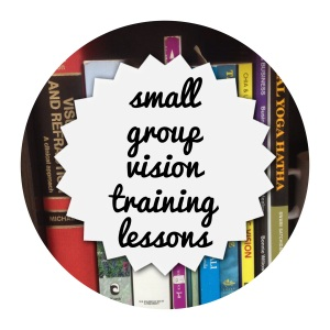 small group vision training lessons